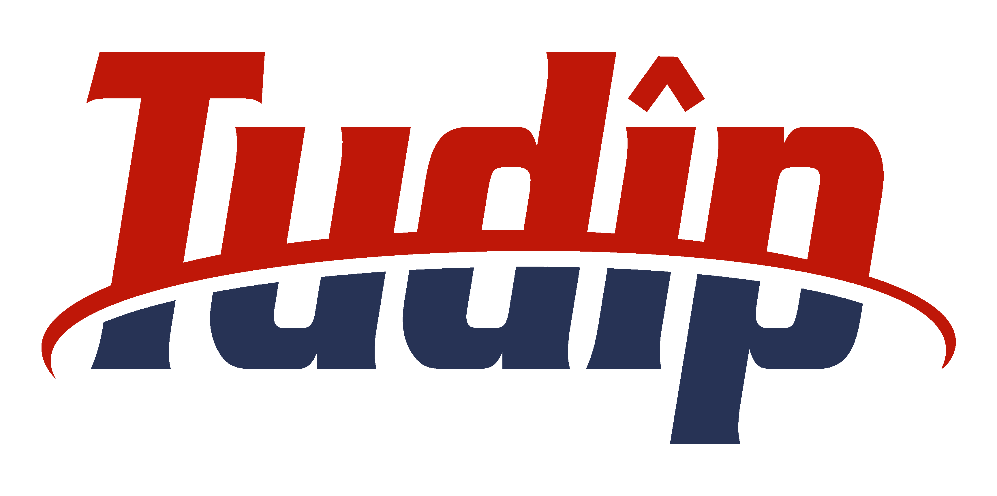 tudip_logo_use_deep_blue_red